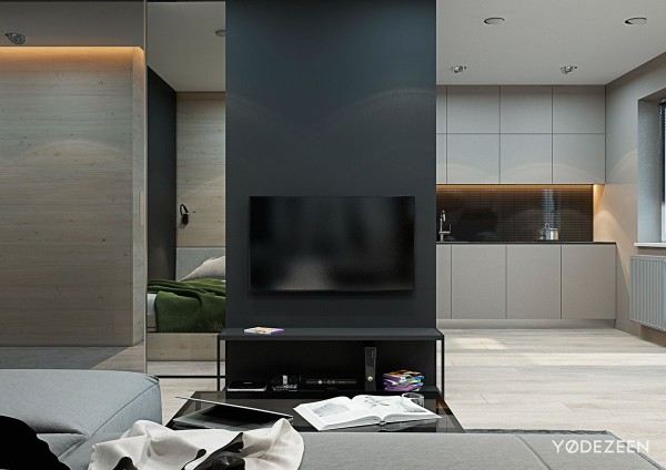 tv divider wall inspiration 600x424 - 5 Small Studio Apartments With Beautiful Design