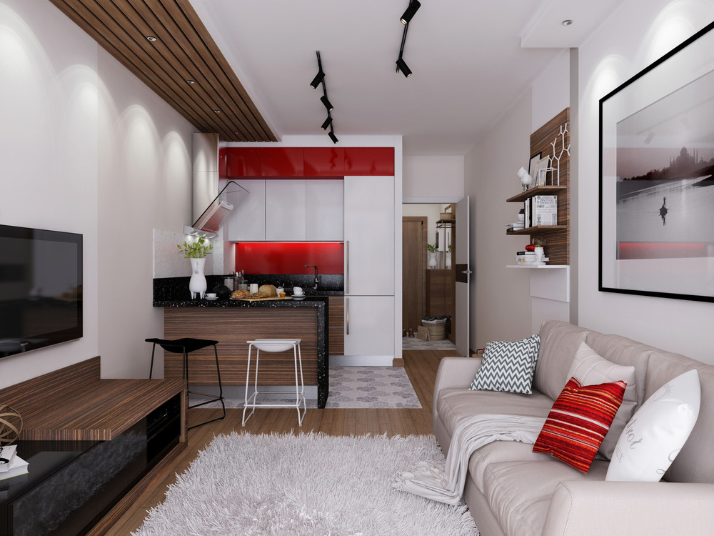 interior design for 24 sq meter condos