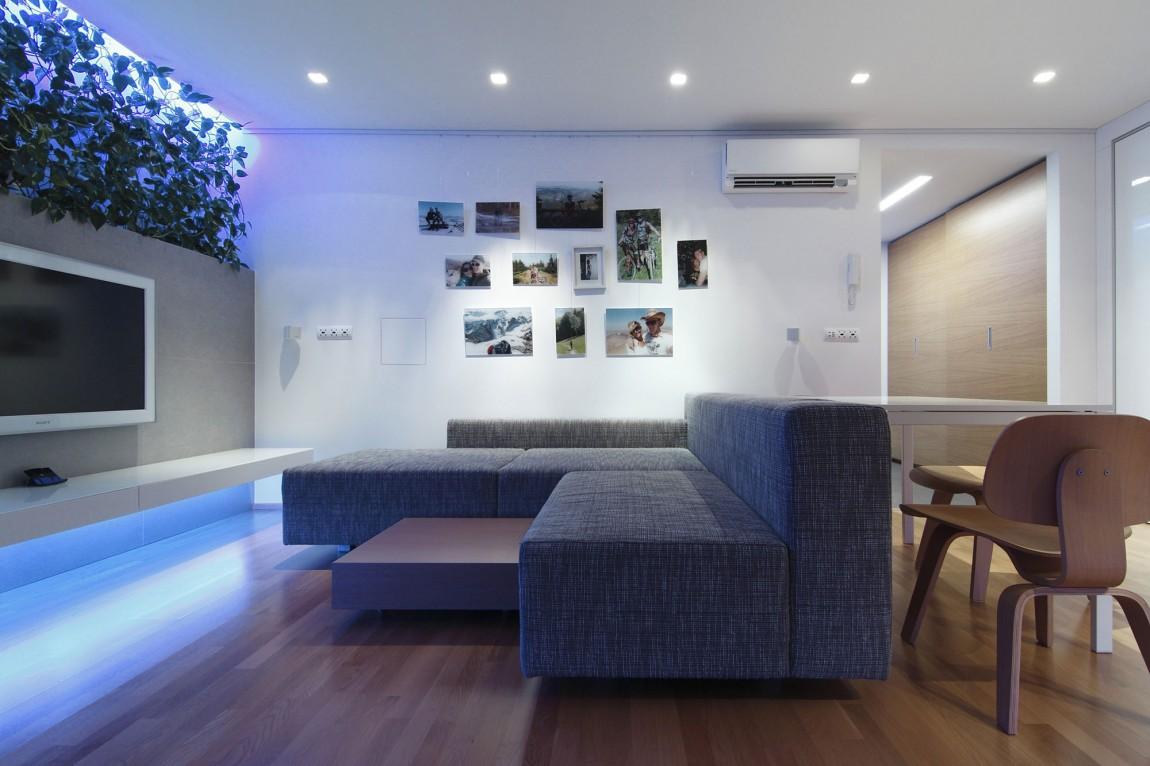 indoor plant inspiration to transform your space. Black Bedroom Furniture Sets. Home Design Ideas