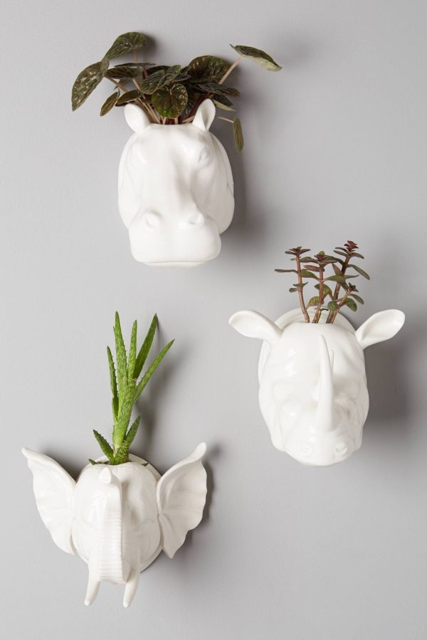 Buy it · wall hanging animal planters
