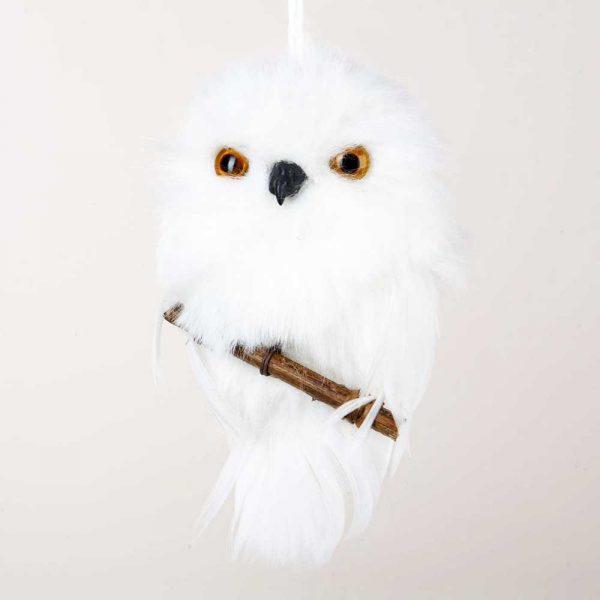 barn owl house plans, screech owl house plans, horned owl house plans, barred owl house plans, on snowy owl house plans