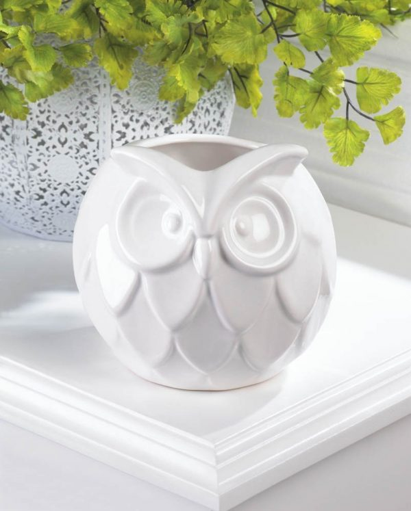 White Owl Vases Vase And Cellar Image Avorcor