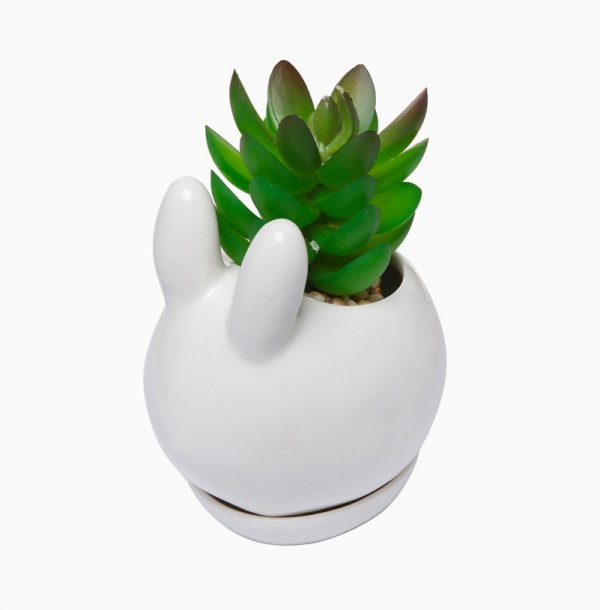 Brand new 50 Unique Animal Planters To Help You Bring Nature Indoors JY71