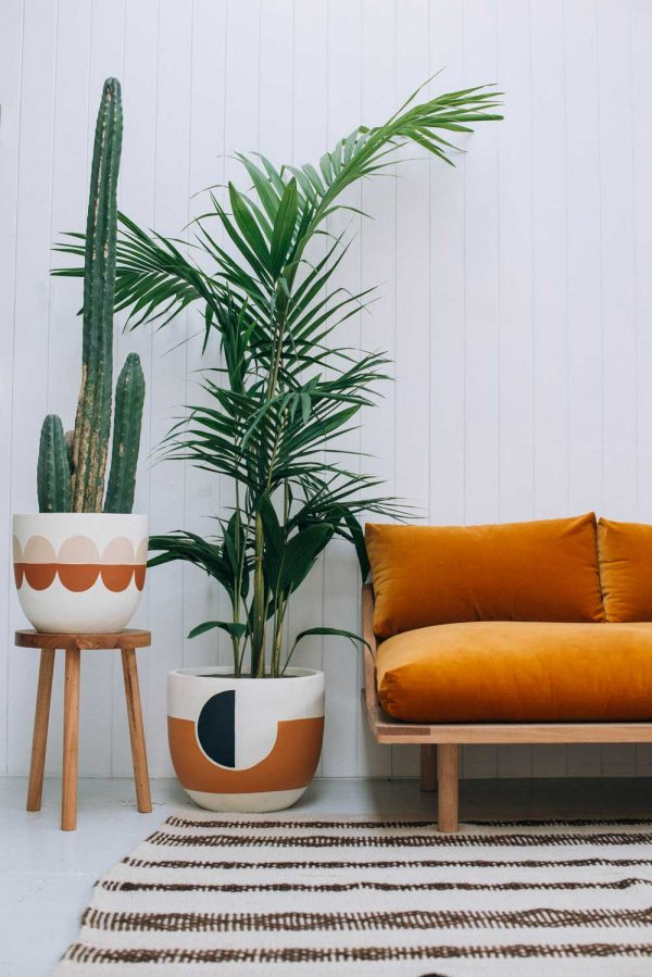 32 beautiful indoor house plants that are also easy to - Plant decoration in living room ...
