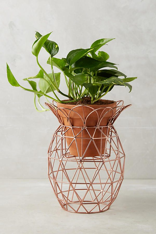 Home Designing Unique Decorative Plant Stands For Indoor Amp Outdoor Use Contemporary