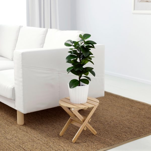 Cool 42 Unique Decorative Plant Stands For Indoor Outdoor Use Squirreltailoven Fun Painted Chair Ideas Images Squirreltailovenorg
