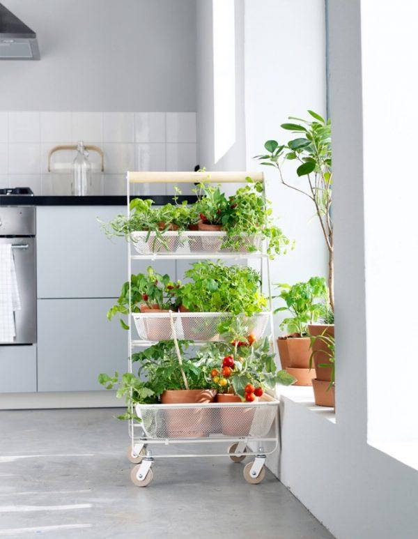 42 unique decorative plant stands for indoor outdoor use rh home designing com indoor plant shelves stands indoor plant shelves with lights