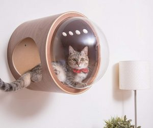 Super Stylish Cat Houses Furniture Home Essentials For The