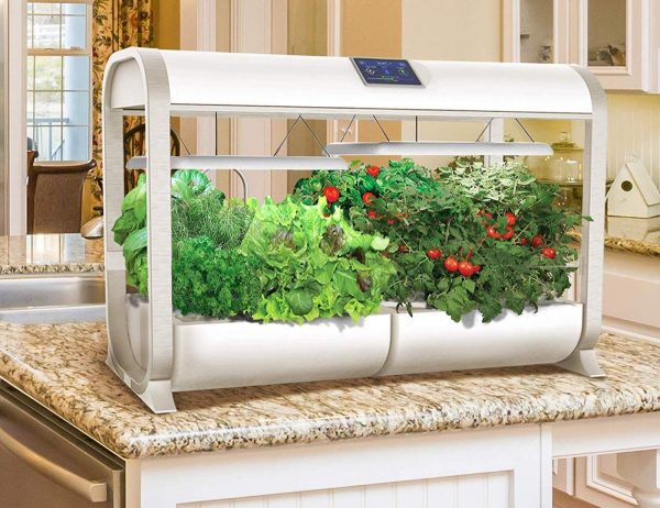 Product Of The Week: A Smart Garden To Help You Grow Veggies Indoors With No Mess