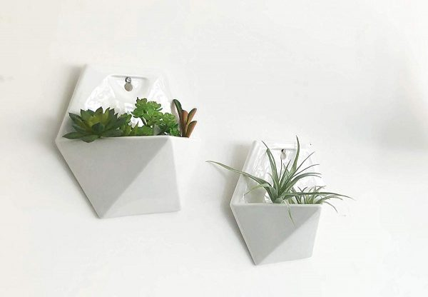 Product Of The Week: Beautiful Hexagonal Wall Planters