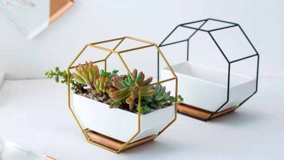 Product Of The Week: Modern Hexagonal Succulent Planters