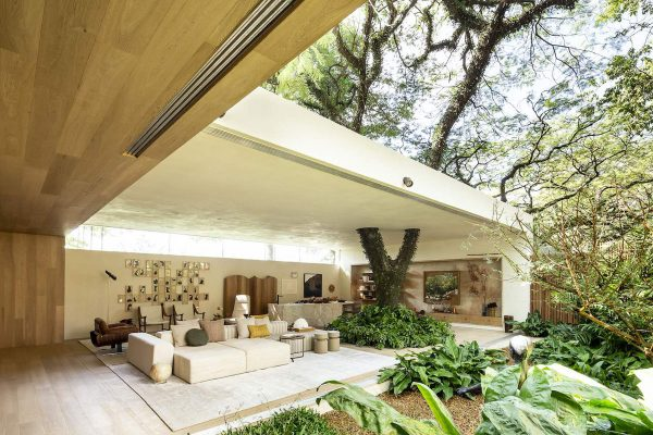 Brilliant Brazilian Houses Centered Around Trees